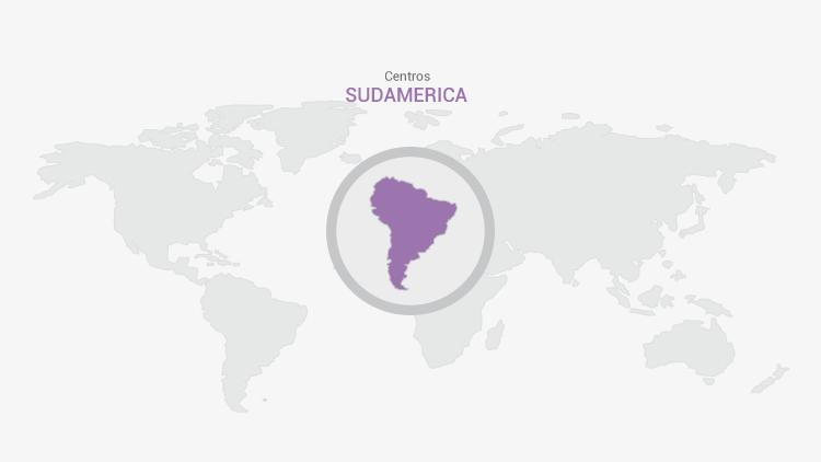 Estudios Sudamericanos